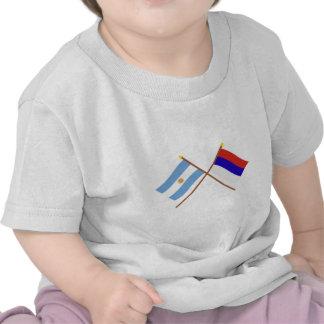 La Argentina y banderas cruzadas Misiones Camiseta