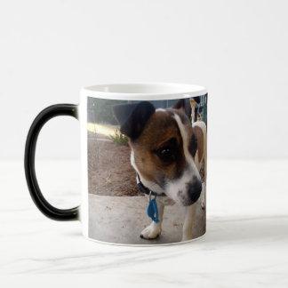 La atracción del fox terrier, magia Morph la taza