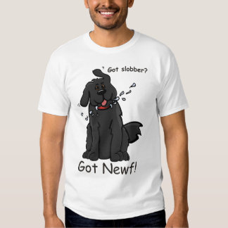 ¡La baba conseguida consiguió Newf! T Camiseta