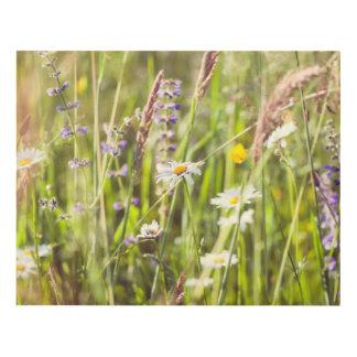 La belleza de las flores salvajes del campo cuadro