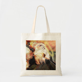 La bolsa de asas de la querube el dormir