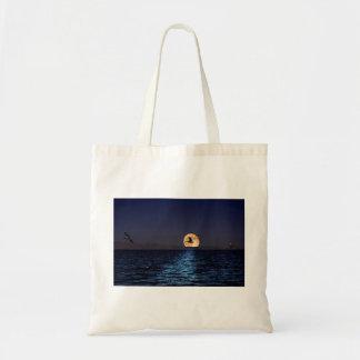 La bolsa de asas del mar de Salton