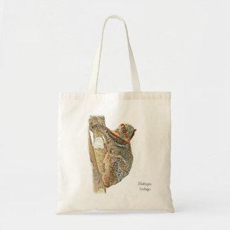 La bolsa de asas malaya del Colugo