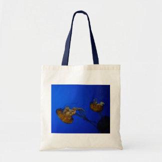 La bolsa de asas pacífica de las medusas de la