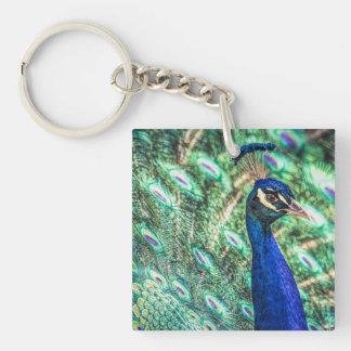 La brillantez en azul &Green llavero del pavo real