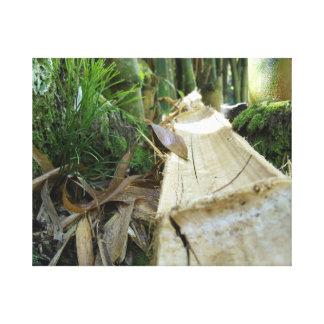 La caída del árbol de Bambu Impresión En Lienzo
