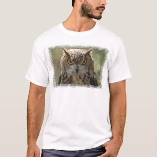 La camiseta de los hombres de la foto del búho