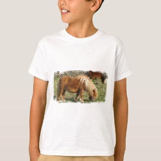 La camiseta de Shetland del niño lanudo del potro