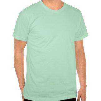 La camiseta ligera llana de American Apparel Hombr
