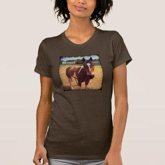 La camiseta orgánica de las señoras de la edición
