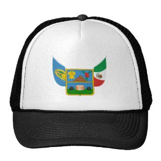 La capa arma símbolo oficial de la heráldica de gorros bordados