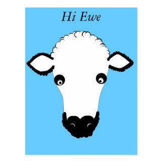 La cara linda de las ovejas añade el texto postales