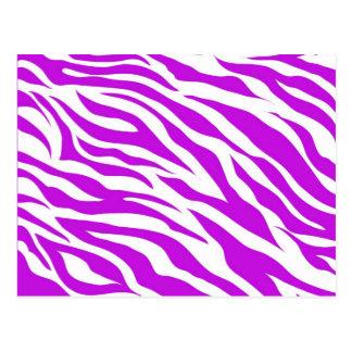 La cebra blanca púrpura femenina raya el estampado postal