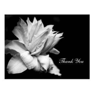 La condolencia conmemorativa del Clematis 1c le Postal