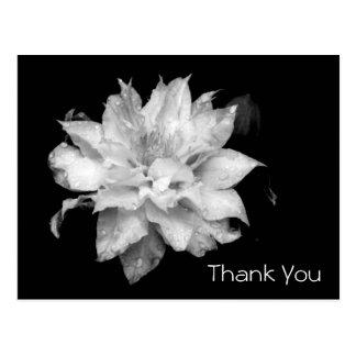 La condolencia conmemorativa del Clematis 3b le Postal