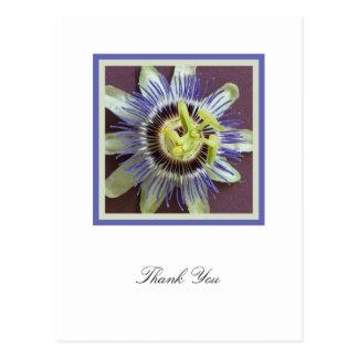 La condolencia de la flor de la pasión le agradece postal