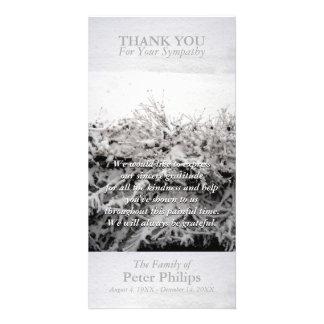 La condolencia de la nieve del invierno le tarjetas fotográficas