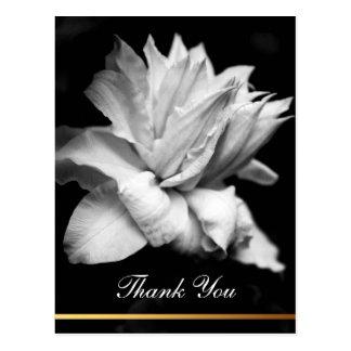 La condolencia floral de la foto del Clematis 1a Postal