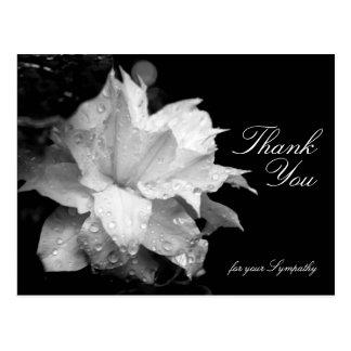 La condolencia floral de la foto del Clematis 2b Postal