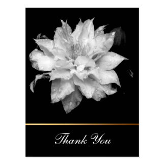 La condolencia floral de la foto del Clematis 3c Postal