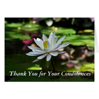 La condolencia le agradece las tarjetas -