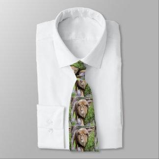 La corbata de los hombres de la impresión del león