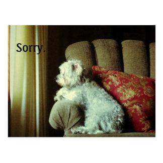 """La disculpa card~when """"triste"""" lo dice todo postal"""