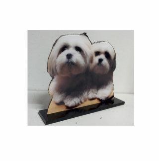 La escultura de acrílico de la foto se levanta esculturas fotográficas