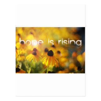 La esperanza está subiendo tarjetas postales