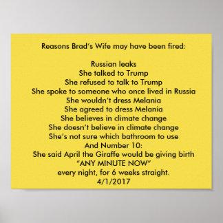 La esposa de Brad Póster