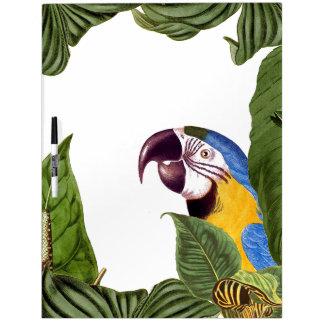 La fauna del pájaro del loro del Macaw sale del Pizarra Blanca