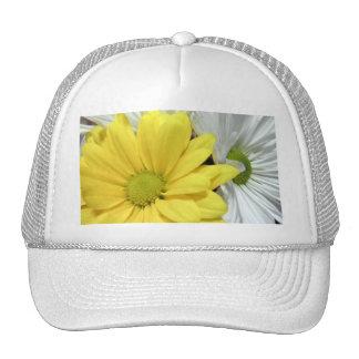 La flor amarilla de las margaritas de la margarita gorras