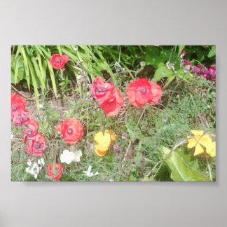 La flor Dapple el poster del valor