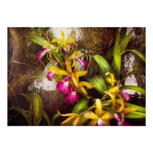 La flor - orquídea - allí es algo sobre orquídeas invitación
