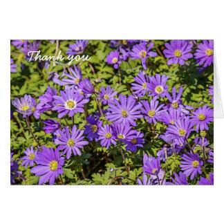 La flor púrpura le agradece las tarjetas (el