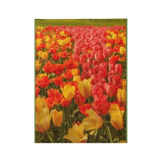 la floración de tulipanes en un poster de madera
