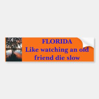 La FLORIDA como la observación de un viejo amigo m Pegatina Para Coche