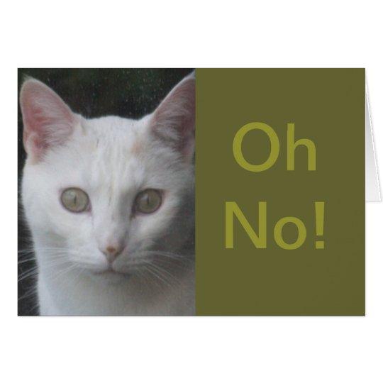 La foto blanca del gato chistosa consigue la tarjeta de felicitación