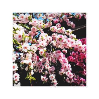 La foto de flores de cerezo envolvió la lona lienzo