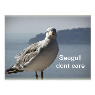 La gaviota pone la postal del cuidado del ` t