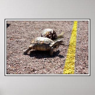 La gran raza de la tortuga y del caracol póster