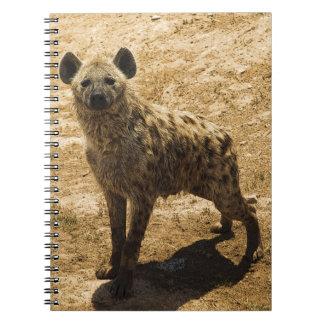 La hiena libreta espiral