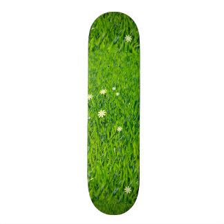 La hierba es más verde monopatines personalizados