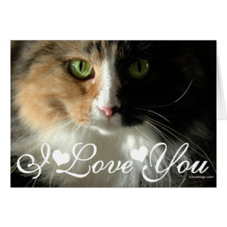 La imagen de la foto de los ojos de gato te amo tarjeta de felicitación