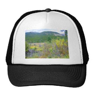 La imagen de un prado de Wyoming imprimió de la Gorro