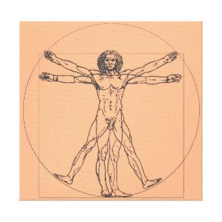 La impresión de la lona del hombre de Vitruvian