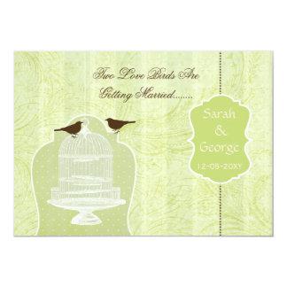 La jaula de pájaros verde elegante, pájaros del comunicados