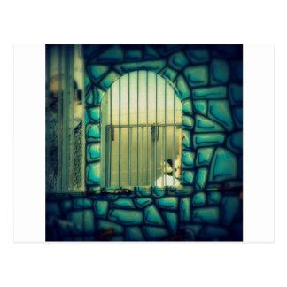 La jaula de Rapunzel Postal