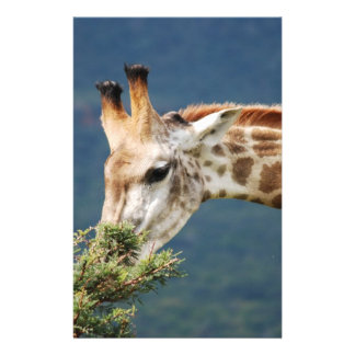 La jirafa que come alguno se va papelería personalizada