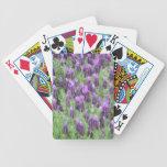 La lavanda florece naipes baraja de cartas